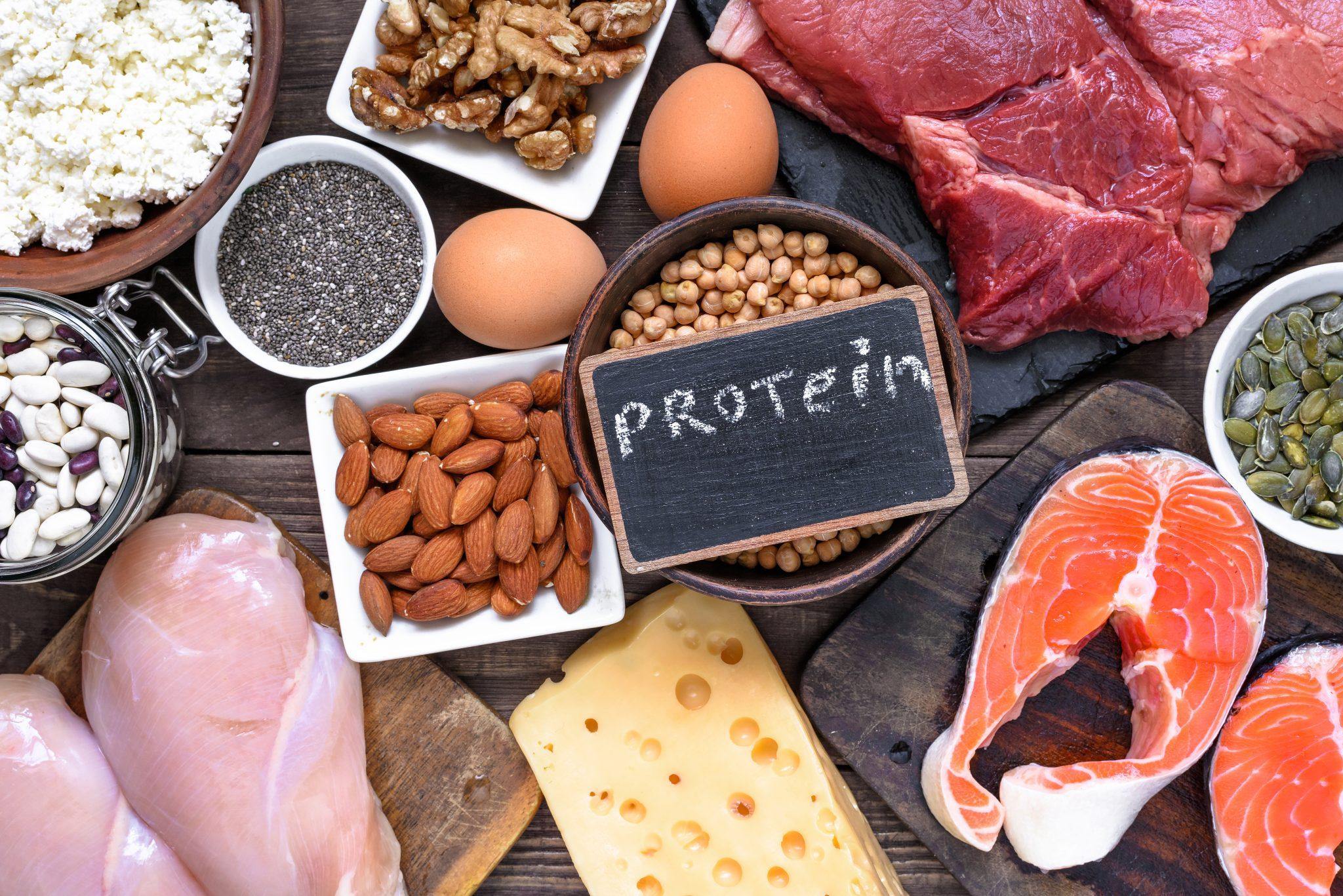 Auswahl an proteinreichen Lebensmitteln zum Beispiel Fleisch, Käse, Eier