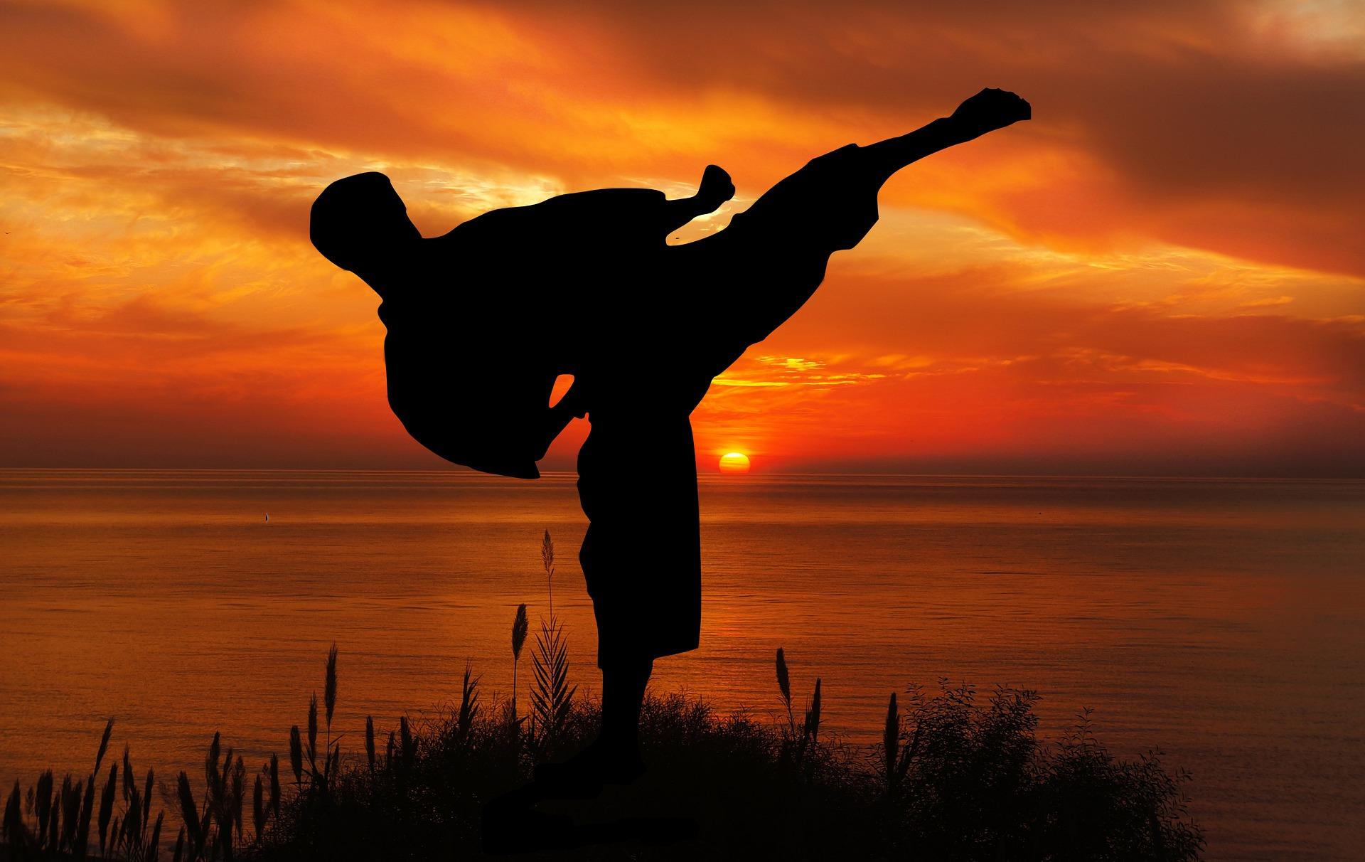 Mann führt Karatekick durch